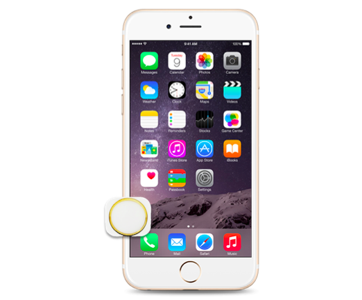 innovative design 24aa2 390c5 iPhone 6 Plus Home Button Replacement