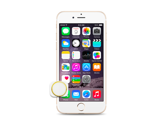 iPhone 6S Home Button Replacement